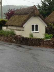 Posh Thatched shed