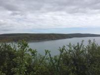 Across the Estuay where we ran last year
